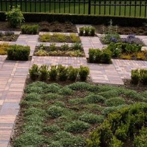 Overzicht bestrating en beplanting in vierkanten