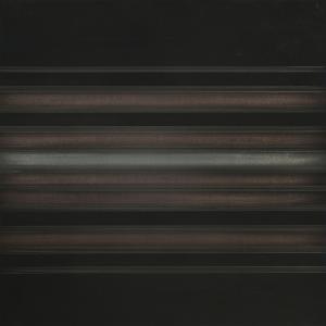 Vibrations Susan Schwalb 2013